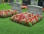 New Light Cemetery gravesites for Anshel and Newburger